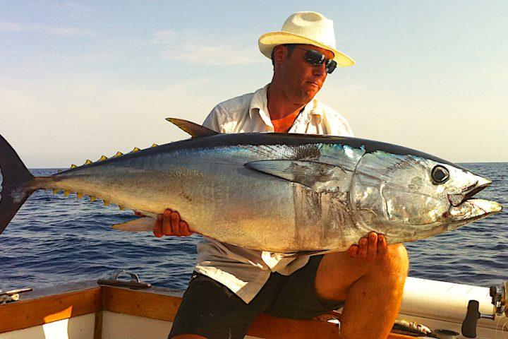 Tuna drifting- bait