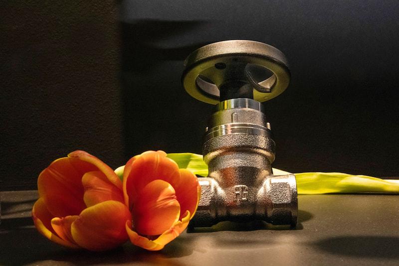 Guidi Srl, non-stick valve