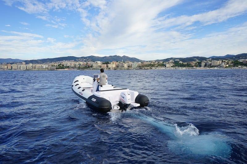 selva d.600, outboard