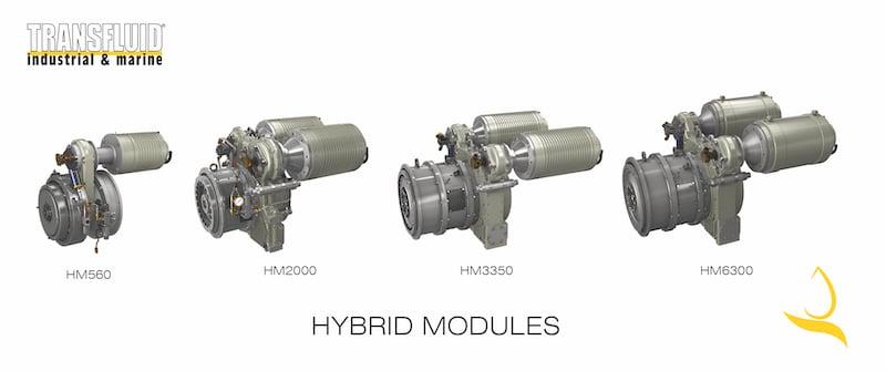 hybrid modules